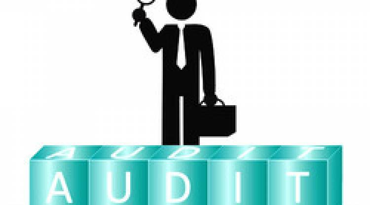 Statutory Audit in India