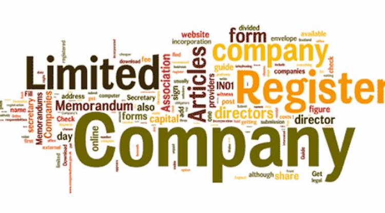 WHAT IS THE TIME LIMIT TO FILE THE CLOSING OF ONE PERSON COMPANY DOCUMENTS TO REGISTRAR OF COMPANIES?