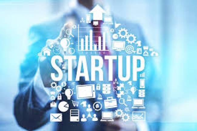 Which Company type is recommended startups?