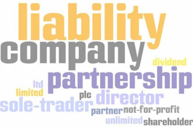 Types Of Company Private Limited Company vs LLP vs OPC vs Partnership vs Proprietorship
