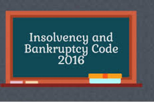 What is the insolvency and Bankruptcy?
