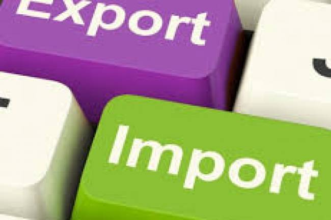What is Import Export Code (IEC)?
