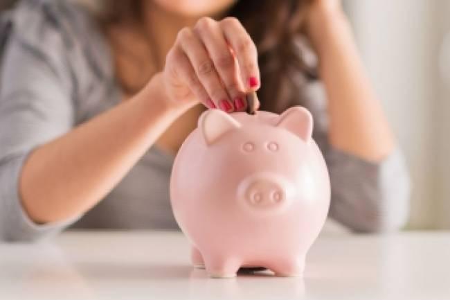How Nidhi Company arrange finance