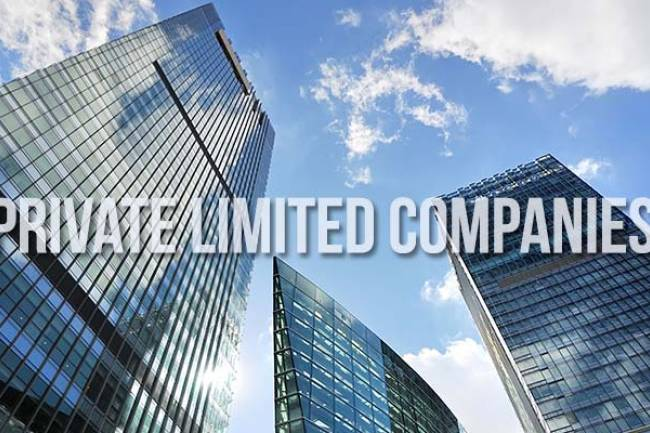Strategic Advantages to opt Private Limited Companies