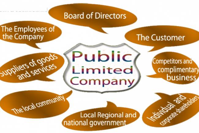 How to Select Name for Public Limited Company? with examples.