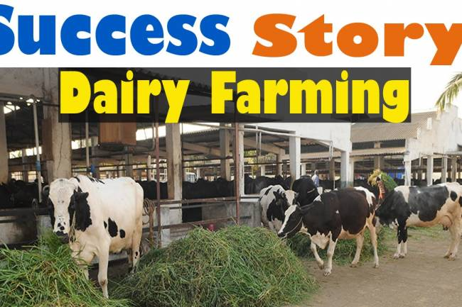 How can I start a dairy business in India?