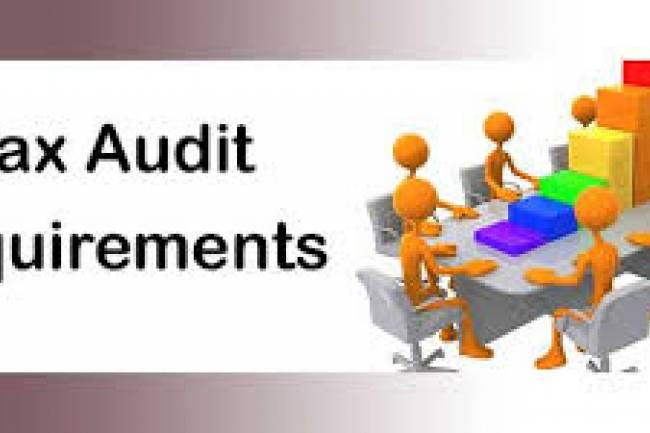 What is the difference between statutory audit and tax audit?