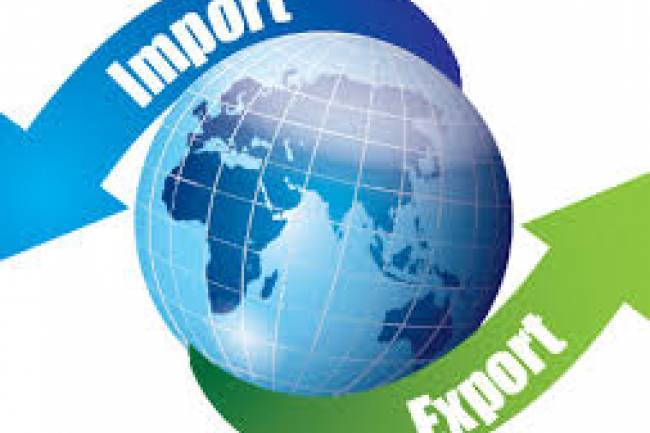 How do I start an online import/export business of rice and grains in India?