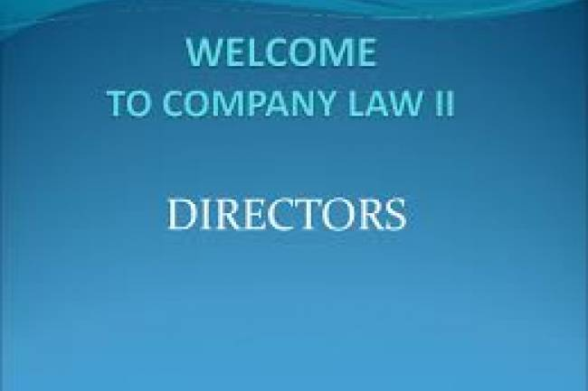 Types of Directors as per Companies Act 2013