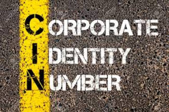Corporate Identification Number (CIN)